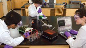 дослідження ДНК та РНК
